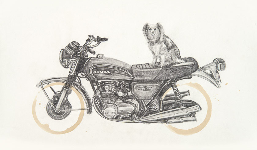 Honda CB550 & Mattie by Carter Asmann