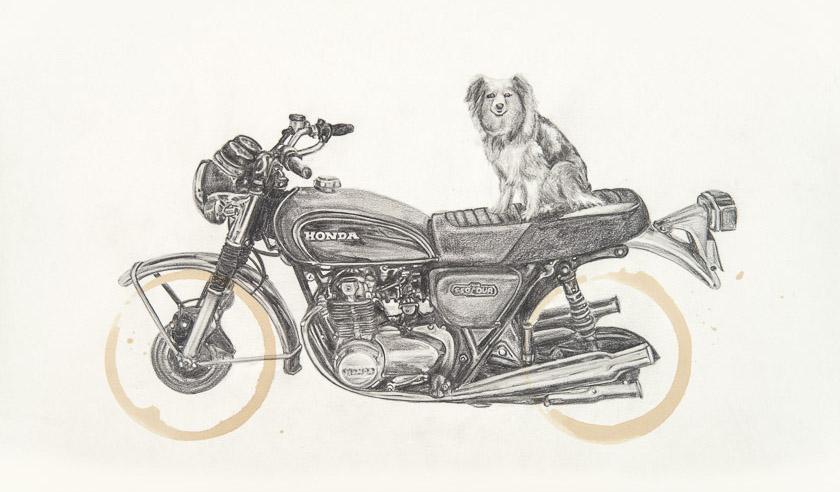 Honda CB550 & Mattie by Carter Asmann
