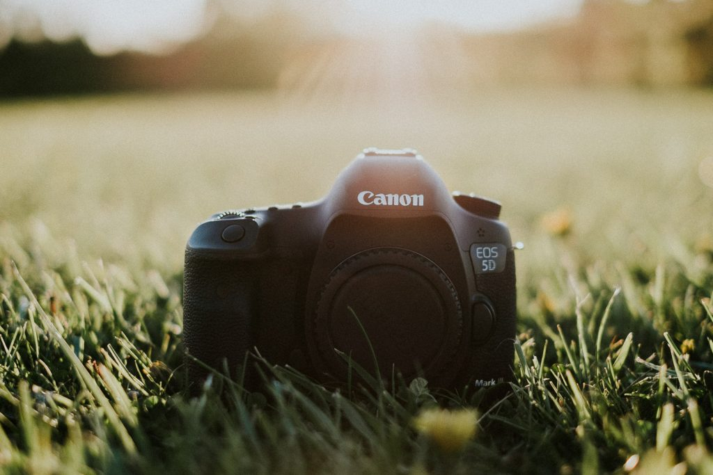 Canon-vs-Nikon-2016-Scuffins-Photography-002