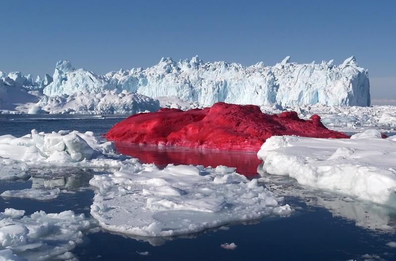 Marco Evaristti és a véres jéghegy
